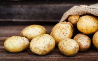 Những thực phẩm giúp bạn tắt hormone gây béo